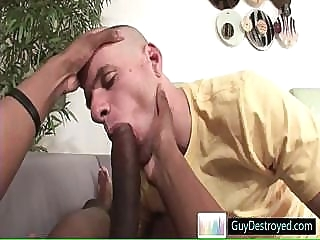 Bald hung fucking and sucking some fat dick By Guydestroyed black gays (gay) blowjob (gay) gays (gay)